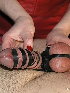 Male domination porn cbt ballbusting
