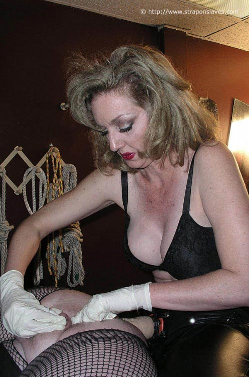 Female dominant mistress master slave porn